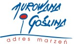 RTW logo murowana