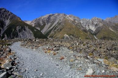 130412 IMG_6066 Nowa Zelandia Mount Cook